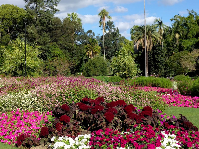 Photo of Brisbane City Botanic Gardens